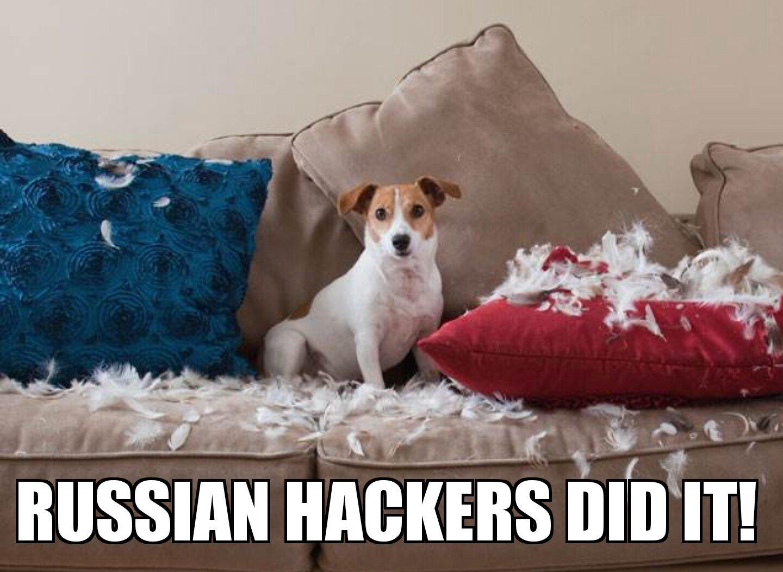 russian-hackers-did-it