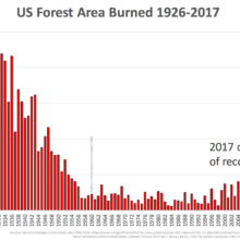 Forest Area Burned in U.S.