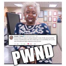 Voter Fraud Expert Brenda Snipes: Meme of the Day