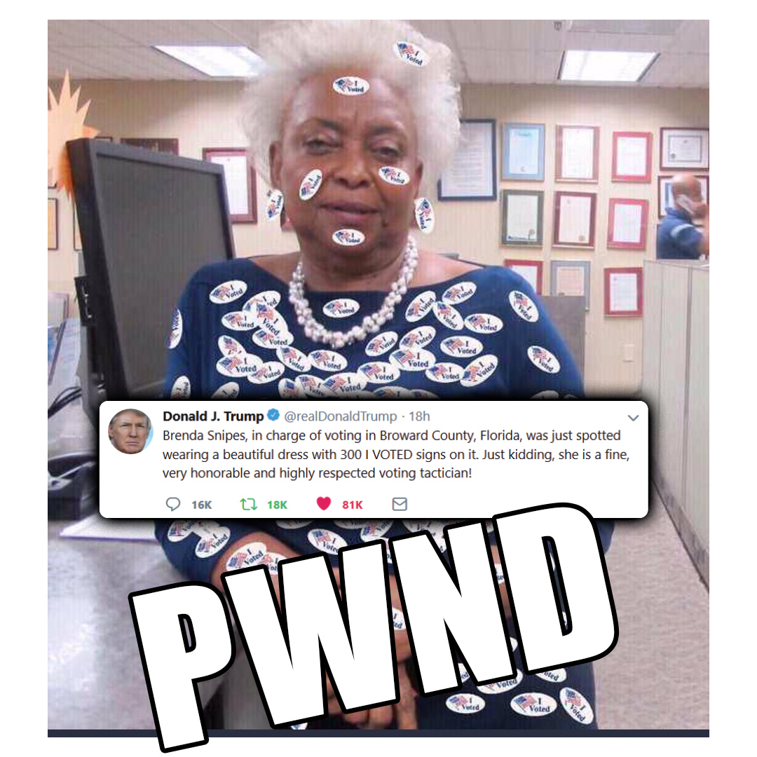 Brenda Snipes Voter Fraud