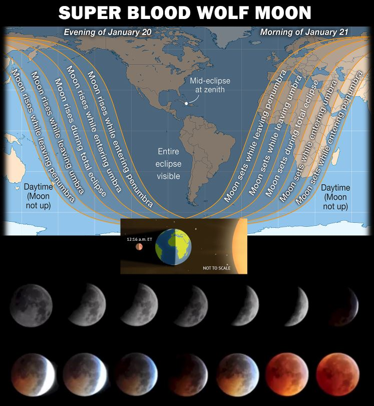 Super Blood Wolf Moon infographic