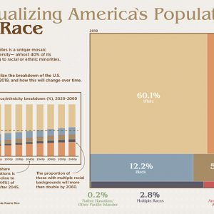 U.S. Statistics on Race, The Ones Used by Elites to Keep Control